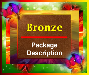 Bronze Package Description Image - 2015
