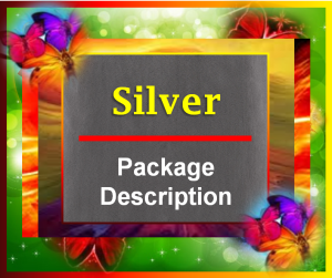 Silver Package Description Image - 2015